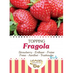 Leagel - aardbei---fragola-topping