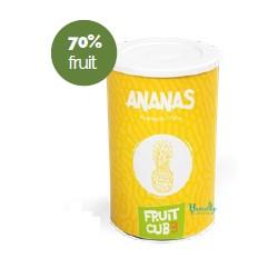 Leagel - ananas-fruit-cube