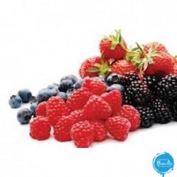 Leagel - bosvruchten---frutto-di-bosco-easy